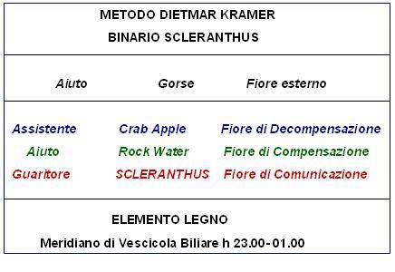 Binario Scleranthus (Metodo D. Kramer)